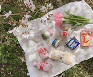 aesthetic, cherry blossoms, and dessert image