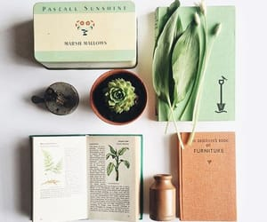 green, journal, and plants image