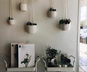 carefree, plain, and plants image
