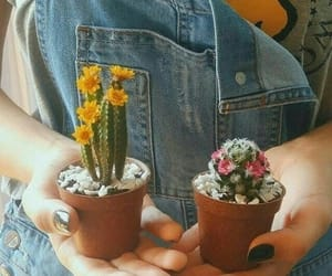 cactus, flowers, and girl image