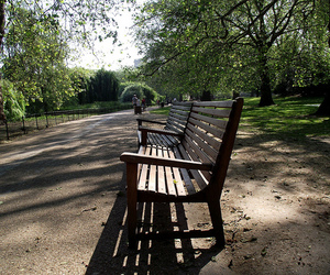 bench, london, and park image