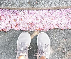 adidas, shoes, and cherry blossoms image