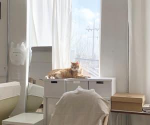 room, interior, and minimal image