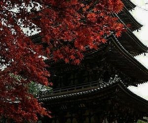 aesthetic, house, and japan image