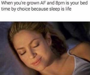 funny, humor, and sleep image