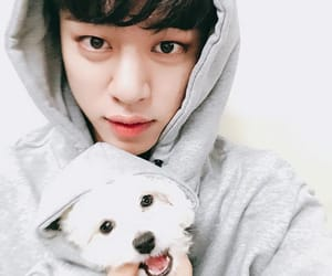 bap, youngjae, and daehyun image