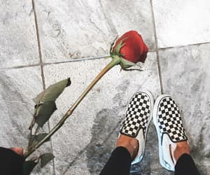 rose, shoes, and aesthetic image