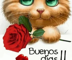 amor, frases español, and saludo image