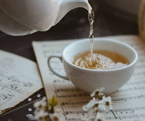 flowers, music, and قراءة image