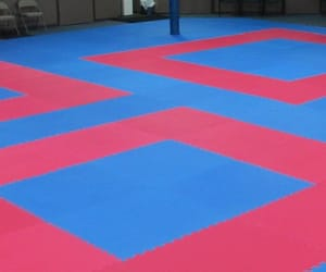 delhi, karate mats, and taekwondo mats image