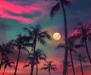 amazing, beach, and night image