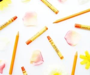 オレンジ and サクラクレパス image