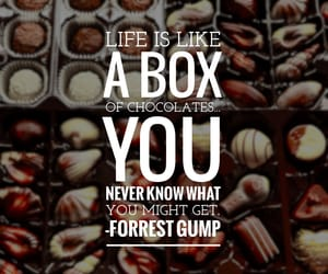 box, chocolate, and forrest gump image