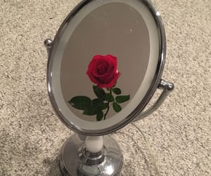 aesthetic, rose, and mirror image