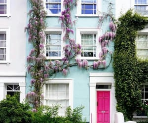 tumblr girl, Notting Hill, and love flowers image