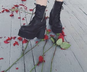 rose, grunge, and aesthetic image