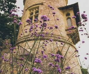 flowers, tower, and purple image