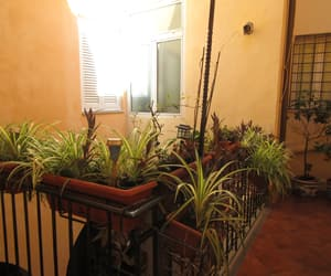 balcony, garden, and light image
