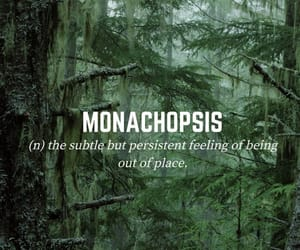 definitions, forest, and green image