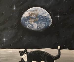 cat, art, and space image