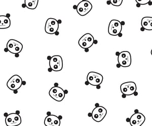 background, panda, and cute image