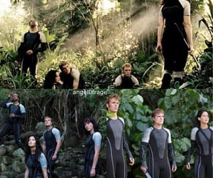 arena, Collage, and thg image