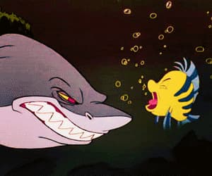 disney, gif, and shark image