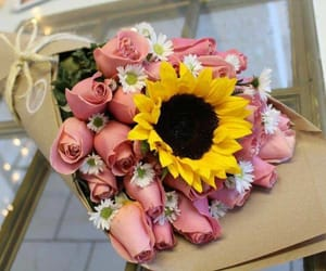 sunflower, roses, and flowers image