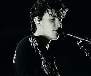 gif, shawn mendes, and shawn image