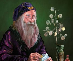 harry potter and albus dumbledore image