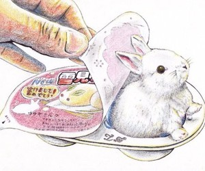 rabbit and bunny image
