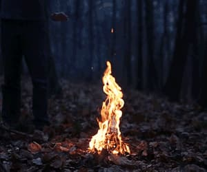gif, fire, and autumn image
