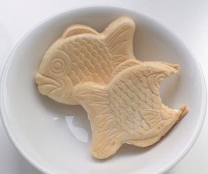 aesthetic, food, and fish image