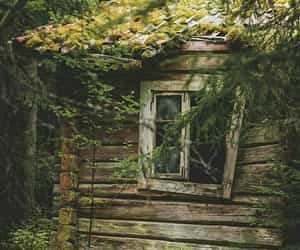 abandoned, photography, and cottage image