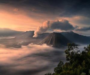 loveslandscape image