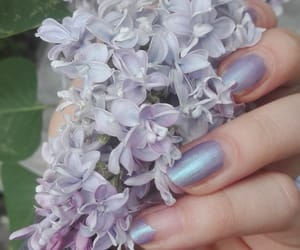 aesthetic, colour, and lavender image