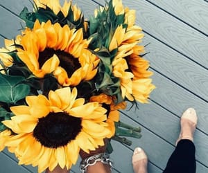 flowers, sunflower, and bouquet image