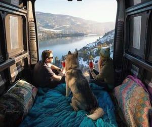 beautiful, dog, and camping image