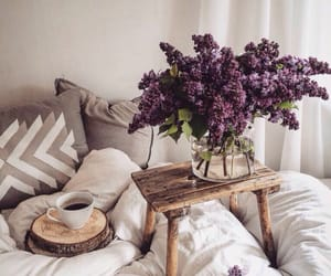 bed, breakfast, and lilac image