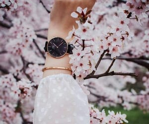 spring, watch, and watches image