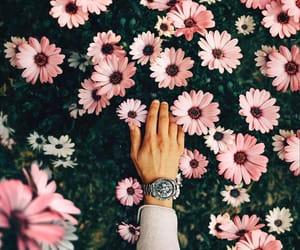 fashion, fashion blog, and fashion blogger image