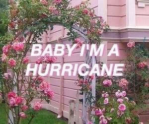 hurricane, pink, and quotes image