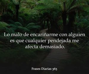 frases, cariño, and sentimientos image