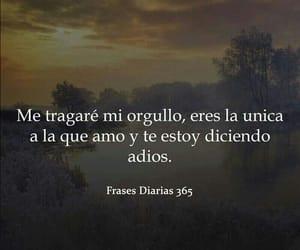 adios, amor, and español image
