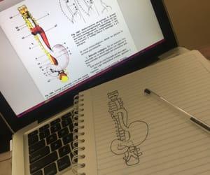 anatomy, college, and medicine image