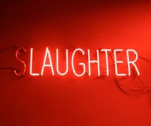 neon, laughter, and aesthetic image