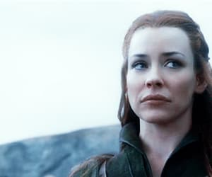 gif, tauriel, and the hobbit image