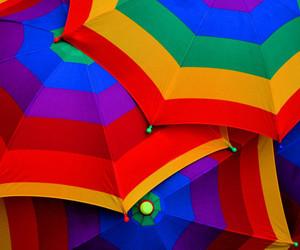 umbrella, rainbow, and colors image