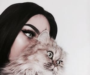 account, maine coon, and makeup image