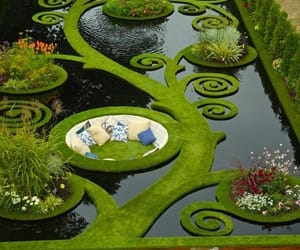 garden, photography, and new zealand image